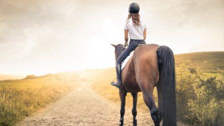 Für Pferdefans ist ein Urlaub auf dem Bauernhof genau das Richtige.  (ab/spot)