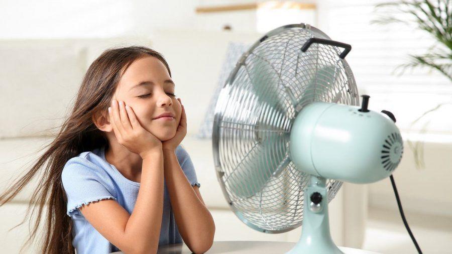 Sommerhitze in der Wohnung kann man mit verschiedenen Mitteln bekämpfen. (eee/spot)