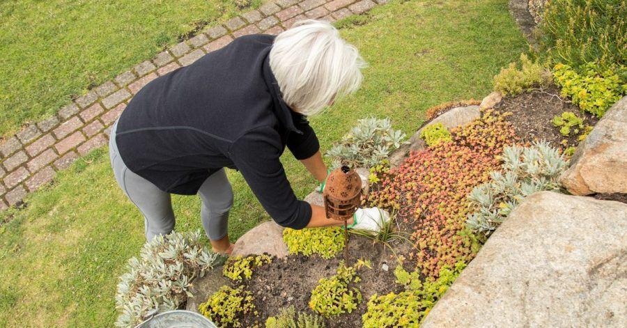 Da Steingärten oft alpine Pflanzen beheimaten, lassen sich damit zum Beispiel auch Hänge im Garten gut gestalten.