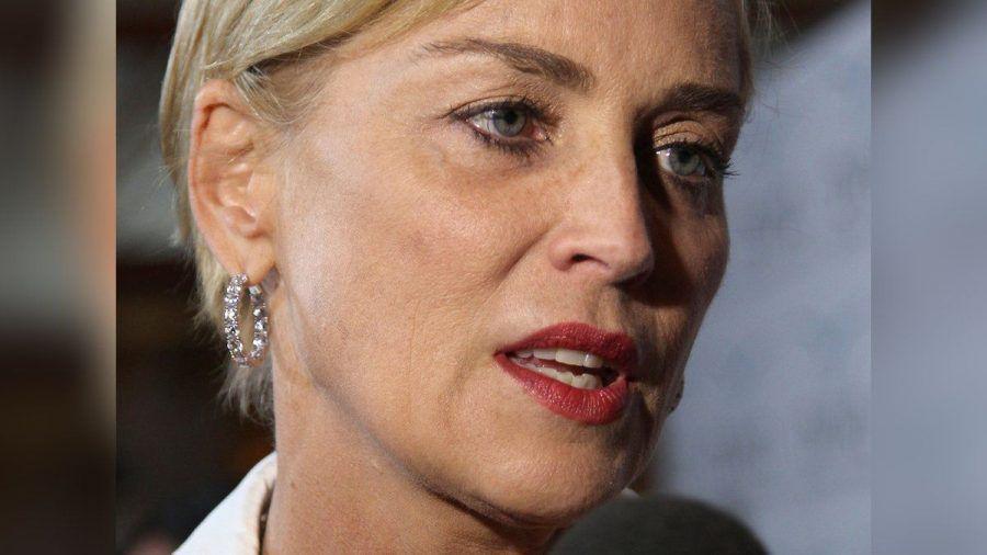 Sharon Stone bangt um das Leben ihres kleinen Neffen. (wag/spot)