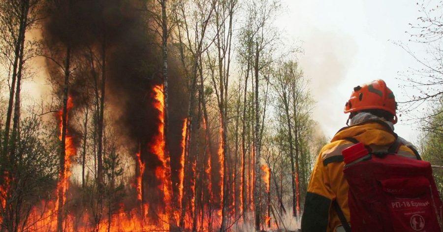 Kampf gegen einen Flächenbrand in Jakutien.