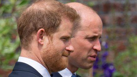 Macht Prinz Harry bei seiner Biografie einen Rückzieher?