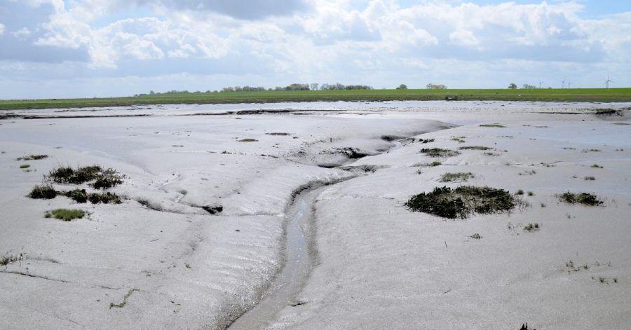 Der Langwarder Groden ist Teil des Unesco-Welterbes Wattenmeer.