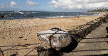 Ein angespülter Ballen am Strand.