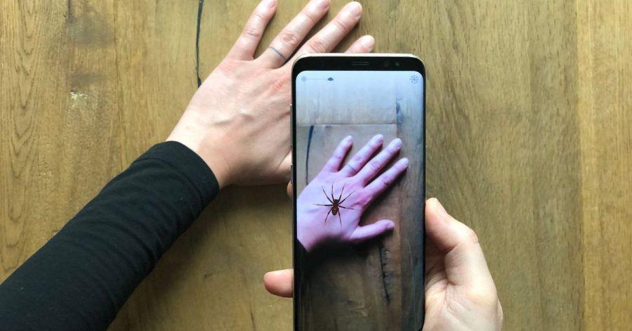 Virtuelle Realität: Diese Spinne lebt nur im Smartphone.