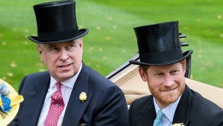 Prinz Harry und Prinz Andrew kommen im Enthüllungsbuch von Katie Couric vor. (ili/spot)