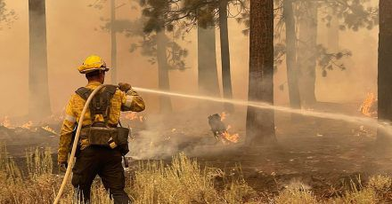 Ein Feuerwehrmann aus Los Angeles County benutzt einen Schlauch, um die Flammen des Caldor-Feuers zu löschen.