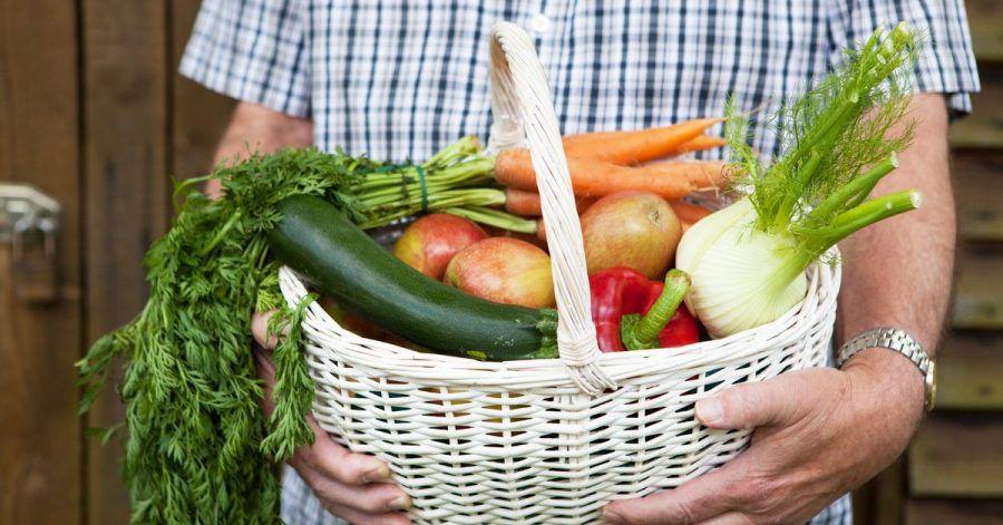 Sich Obst und Gemüse im Abo liefern zu lassen, ist eine bequeme Sache. Und man hat das Gefühl, die regionale Landwirtschaft zu stärken.