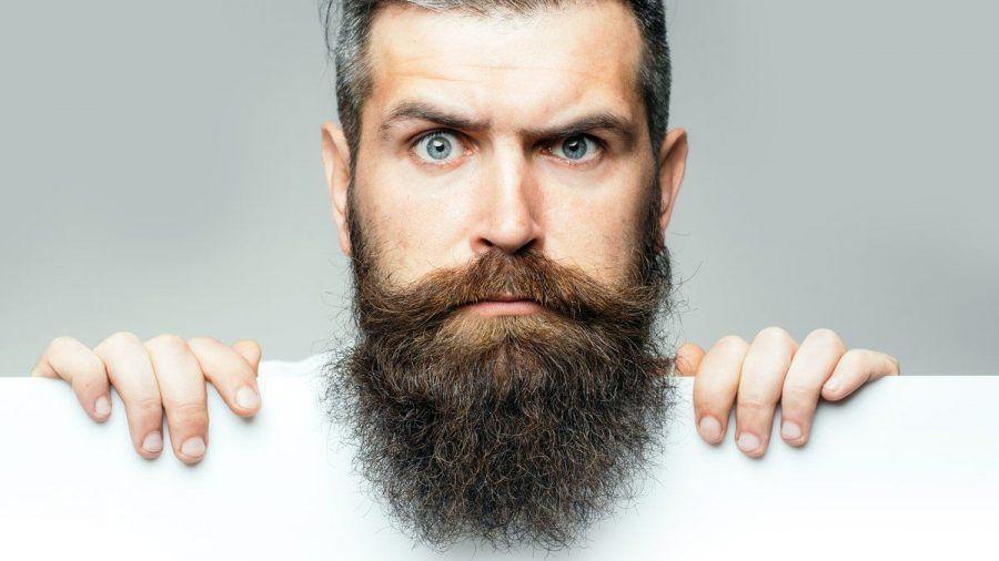 Je voller, desto besser. Am Welttag des Bartes dreht sich alles um die Gesichtsbehaarung. (elm/spot)