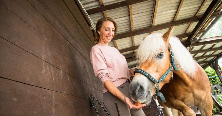 Damit ein Pferd gut lernt, gibt es laut Experten verschiedene Herangehensweisen: Mit der Stimme loben, kraulen, einen zuvor aufgebauten Druck wegnehmen oder ihm Leckerli geben.