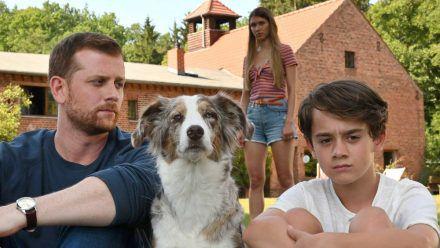 """""""Käthe und ich: Das Adoptivkind"""": Paul Winter (Christoph Schechinger, l.) versucht mit Hilfe von Hund Käthe Zugang zu Ben (Oskar Netzel) zu finden. (cg/spot)"""