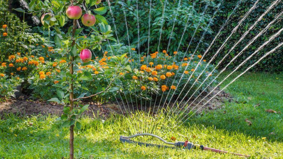 Unter anderem die Bewässerung des Gartens kann per Sprachbefehl gesteuert werden. (wue/spot)