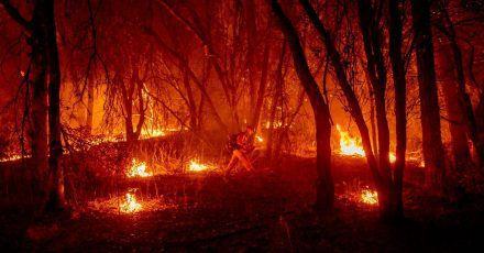 Ein Feuerwehrmann versucht, ein Feuer einzudämmen.