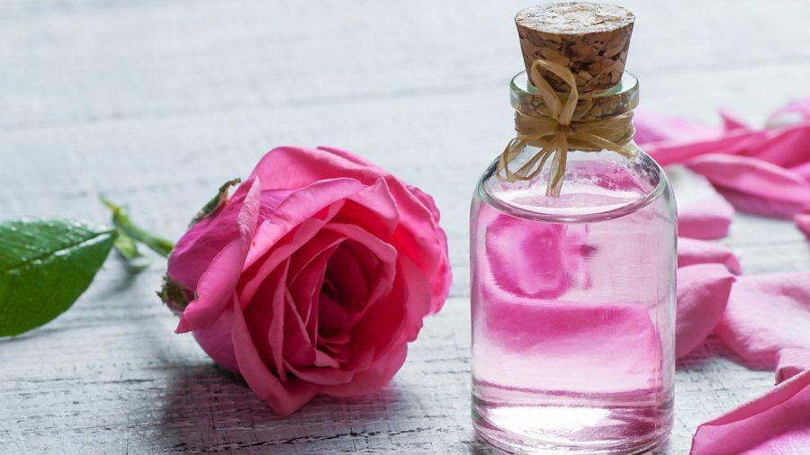 Rosenwasser gilt schon lange als Beauty-Wunder. (kms/spot)
