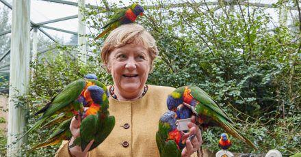 Von Lori-Papageien umflattert:Angela Merkel.