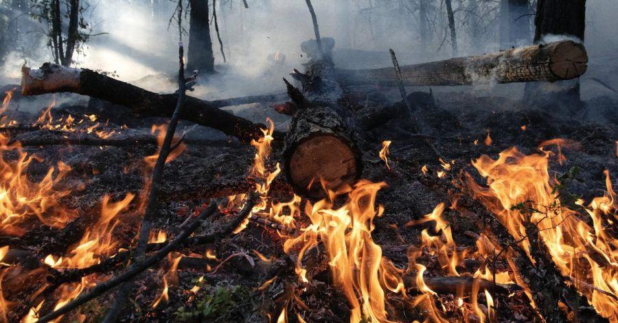 Waldbrand im August im Gebiet Gorny Ulus (Jakutien).