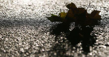 Rutschige Jahreszeit: Im Herbst müssen Autofahrer auf einigen Straßen mit überraschender Glätte rechnen.