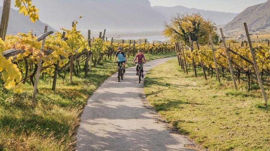 Radtour durch die Weinreben mit Blick auf den Kalterer See (abo/spot)