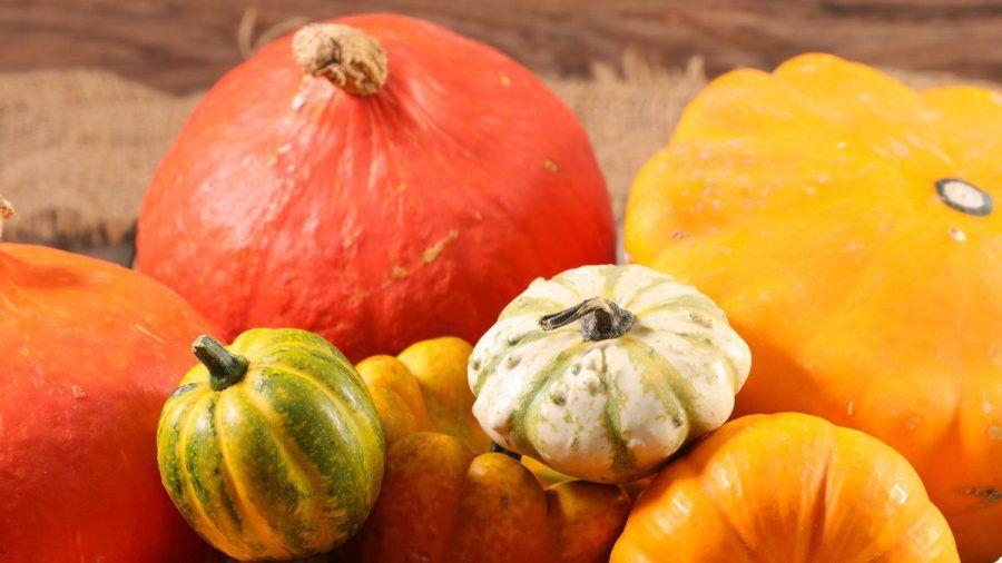 Kürbisse haben im Herbst Saison und landen bei vielen regelmäßig auf dem Tisch. (amw/ncz/spot)