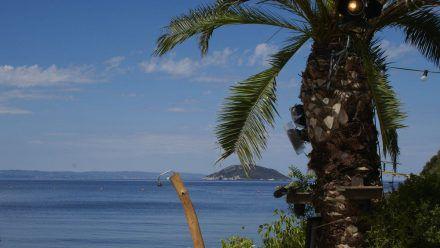 """Auf einer griechischen Insel lernen sich 16 nackte Singles bei """"Adam sucht Eva"""" kennen. (aha/spot)"""