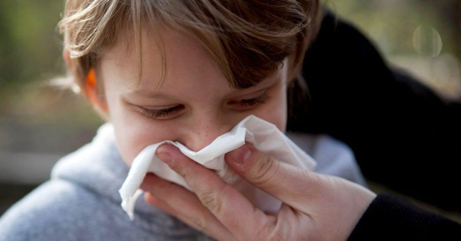 Gefühlt läuft das Näschen den ganzen Winter. Gerade im ersten Kitajahr machen Kinder viele Infekte durch.