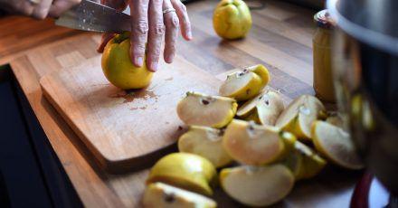 Wird beim Aufschneiden der Quitten braunes Fruchtfleisch sichtbar, ist der Schreck groß. Die Fleischbräune ist aber unbedenklich, sie tritt bei ungünstigen Wachstumsbedingungen auf.