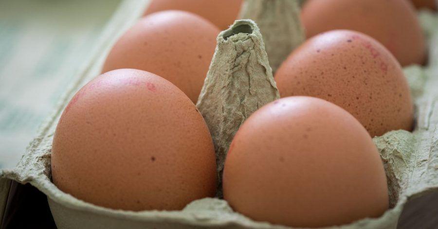 Nach dem Kauf sollten Eier direkt in den Kühlschrank - allerdings nicht in die Türfächer. Dort kann es Temperaturschwankungen geben.