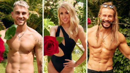 """""""Bachelor in Paradise"""": Sex vor der Kamera, Tränen und Beef - so krass wird die 3. Staffel"""