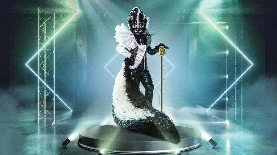 Das Stinktier: Welcher Promi wird in dieses Kostüm schlüpfen? (mia/spot)