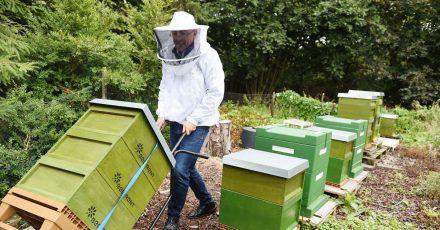 """Dieter Schimanski von der Firma """"Bee-Rent"""" - zu seinen Kunden zählen vor allem Unternehmen, die den Honig etwa zu Werbezwecken nutzen."""