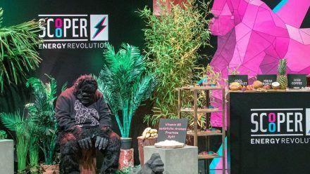 Das Gorilla-Maskottchen des Start-ups Scooper. (smi/spot)